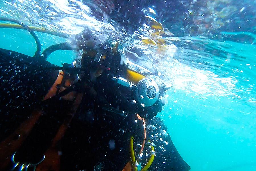 sub marine services
